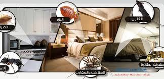 Photo of شركة مكافحة حشرات في الجميرا  0569795951