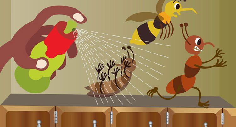 شركة مكافحة حشرات بالذيذ